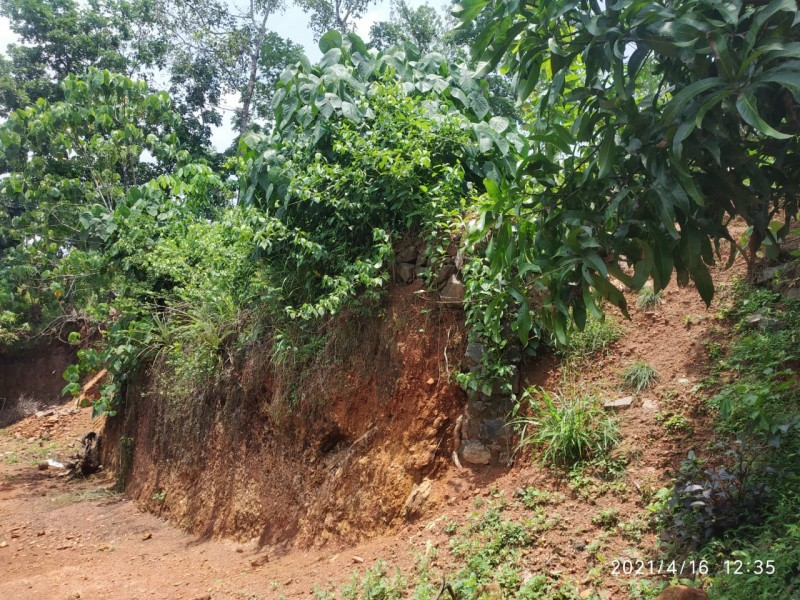 13.5 Cents Residential plot for sale Near St Jude global school, Manarcadu, Kottayam