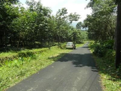 4.75 Acre Rubber plantation for sale at Pala,Kottayam.
