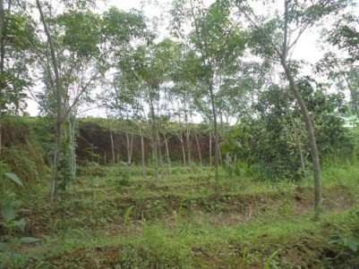 45.5 Cents of Residential land for sale at Vettickal,Mulanthuruthy,Ernakulam District.