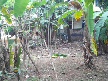 8.25 Cents of Residential Land for sale at Thoppil ,Edappally,Ernakulam District.