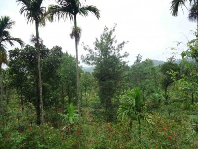 4 Acres of Land for sale at Mananthavady,Wayanad.