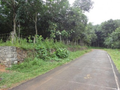 95 Cents of Residential Land for sale at Pampady,Kottayam.