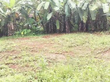 Land Near Mavoor Road