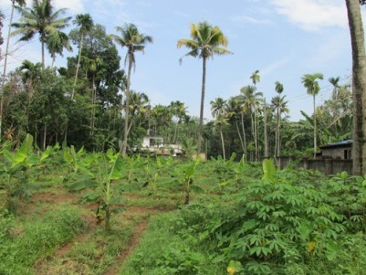 Residential Land for Sale in North Paravur,Ernakulam.