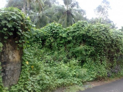 Plot for sale at Valiyakulam, Changanassery, Kottayam