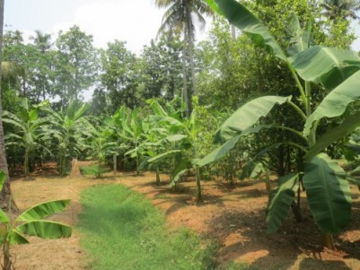 242 acres of land in trissur district. Will be sold as one or as plots.