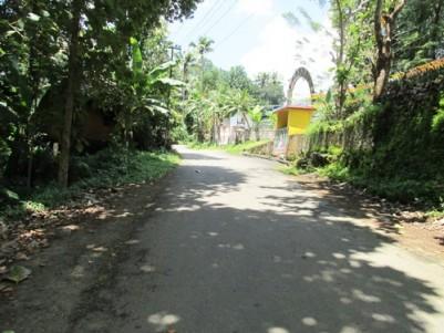 23 Cents of Empty Land for sale at Nellimattom, Kothamangalam,Ernakulam.