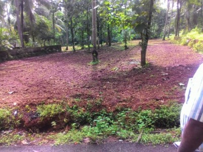 57 Cents of residential land for sale at Thenhipalam,Malappuram.