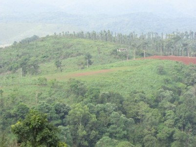 8 acres of land at Wayanad price negotiable
