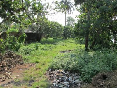 8.1 Cent water frontage land at Kalamassery,Ernakulam.