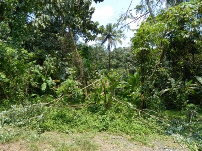 40 Cents of Commercial Cum Residential Plot for sale at Muvattupuzha,Ernakulam District.