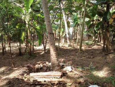 66 Cent land with old House for sale at Chanthavila,Kazhakoottam,Trivandrum.
