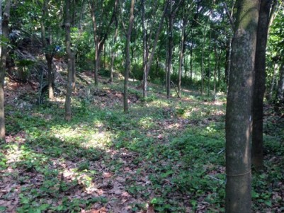 1.35 Acres of land with 2 BHK House for sale at Maniyamkulam ,Chennad ,Near Erattupetta ,Kottayam.