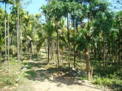 An ideal location for Resort , Home stay & Farm House .