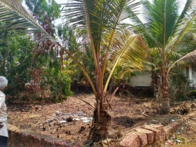 7 Cents Plot for Sale at Kanhangad, Kasargod