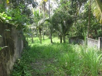 64 Cents of Residential Land for Sale at Pallipuram,Thiruvananthapuram.