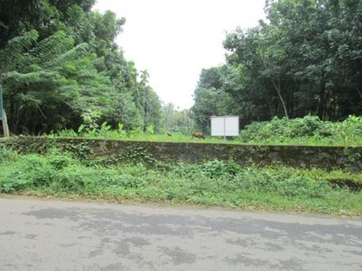 70 Cent Residential Land for sale at Kodanad,Perumbavoor,Ernakulam.