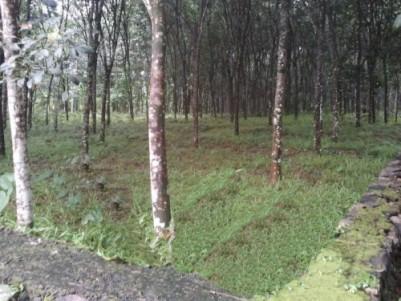 23 cent house plot, near pathanamthitta, vazhamuttom society. 3.5 km from pathanamthitta town.