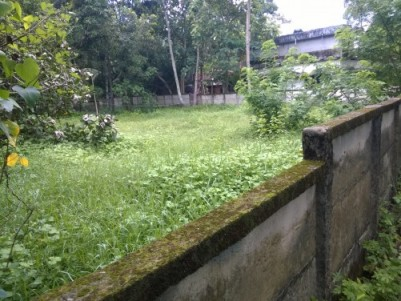 20 cents land for sale. 500 meters away from Thattarambalam Junction. Road frontage