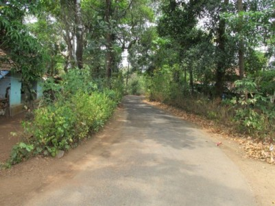 84 Cents of Residential Land for sale at Avanur,Thrissur.