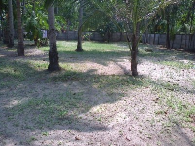 17cent residential land for sale in Kayamkulam, Munnamkutty, Alappuzha district