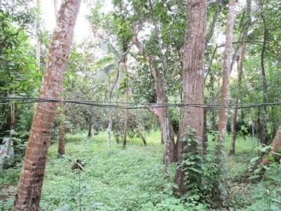 60 Cents of Land for sale at Kara,Kodungallur,Thrissur.