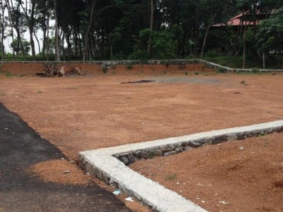 5-20 Cents of land for sale at Pookkattupady,Ernakulam.