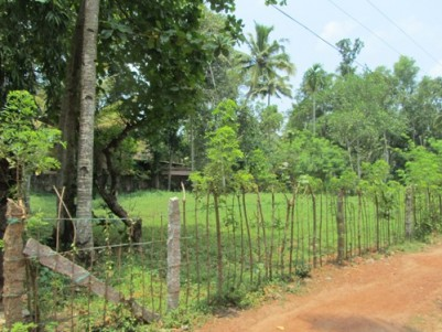 17.5 Cents of Residential land for sale at Harippad,Alappuzha.