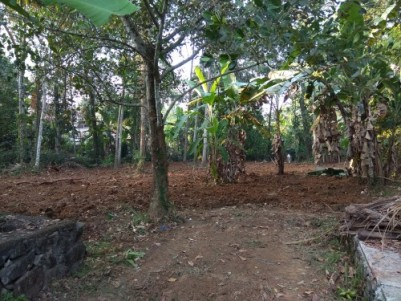 20 Cents of Residential Plot at Nattassery, Kottayam. 3.5 Km from Kottayam Central Jn.