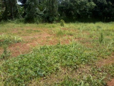 10 Cents of  land for sale at Edakalathur,Thrissur.