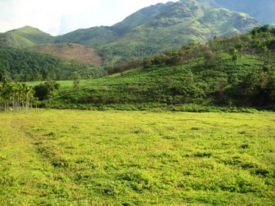 15 Acres Land in a Scenic Location Near Pulinjal,Mananthavady,Wayanad.
