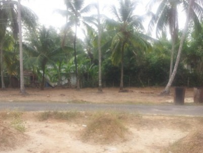 16.25 housing plot for sale in vadanappilly, thrithallur