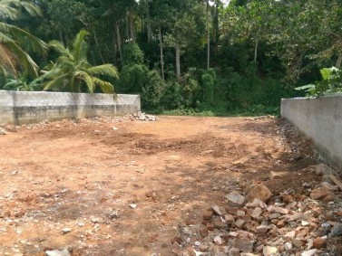 12 cent plot ( 6 X 2) for sale near Peroorkada, Trivandrum.