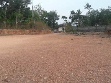 90 Cents Suitable For Houses For Sale at Kanjiramattom, Ernakulam