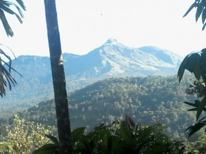 6 acre agricultural land best suitable for resort projects good scenic beauty near rajakad Munnar