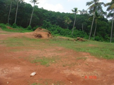 1 Acre Residential Land for Sale near to Kollad, Kottayam