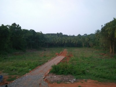 Beautiful  Villa plots  for sale at Manjeri, Malappuram.