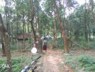 RESIDENTIAL LAND FOR SALE NEAR NILAMBUR TOWN