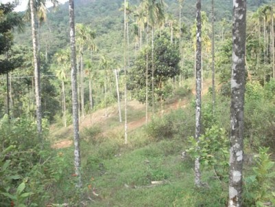 50 Cents of house plot sale at Thirumeni,Cherupuzha, Kannur.