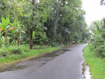 18 Cent Perfect Residential Land for Sale at Ayroor,Pathanamthitta.