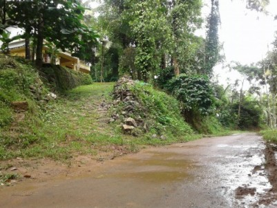 1.6 Acre Plot With 1650 sqft Built House with Rubber and Coffee plantation