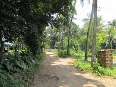 8.25 Cents of land for sale at Ponjassery,Perumbavoor,Ernakulam.