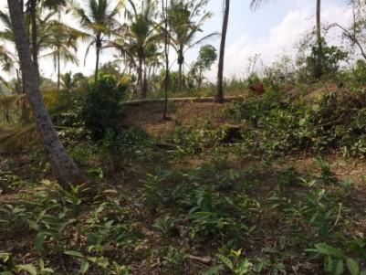 near IIM calicut, kunnamangalam