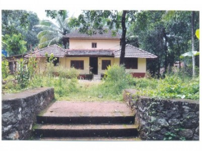 36 Cent land with House for sale at Koonathara, Ottapalam, Palakkad.
