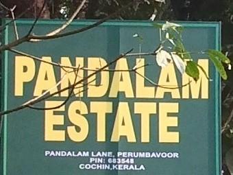 Premium villa plots for sale at Perumbavoor,Ernakulam.