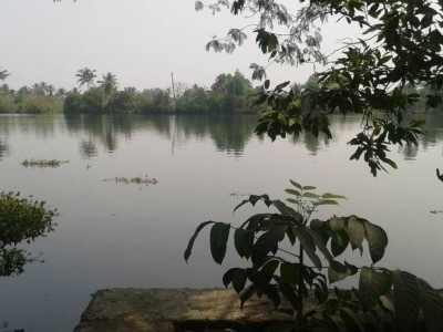 23 Cents Land with House for sale at Moolampilly, Ernakulam