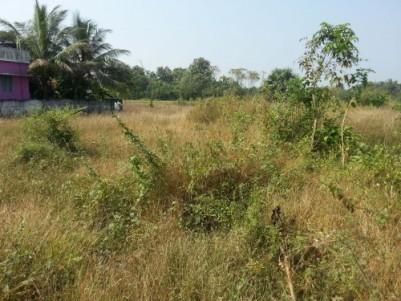 12.45 Cent land for sale at Pudussery,Palakkad.