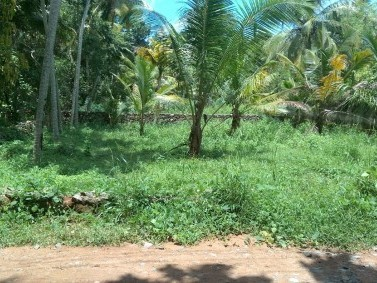 13 cents of land at Venniyoor, Veghanoor, Vizhinjham for urgent sale