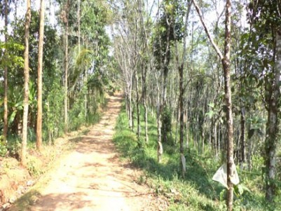 7.07 Acre old LA Pattayam land for sale at Puthakali, Near Parathodu, Adimali, Idukki.