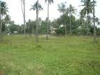 100 Acre Land for Rent at Kanyakumari,Tamil Nadu.